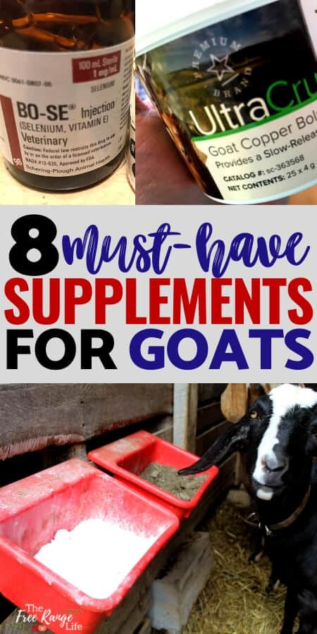 8 must have supplements for goats with minerals, copper, and selenium pictures