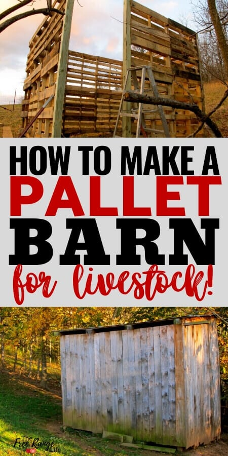 how to make a pallet barn for livestock