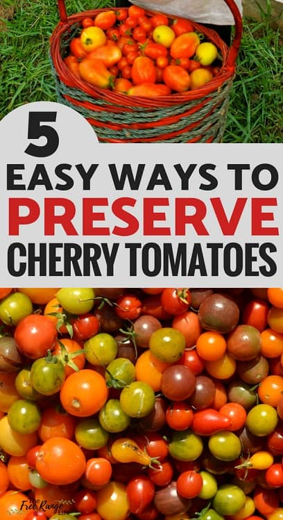Preserving Food: Are you overrun with cherry tomatoes from your vegetable garden? Try one of these 5 easy way to preserve cherry tomatoes!