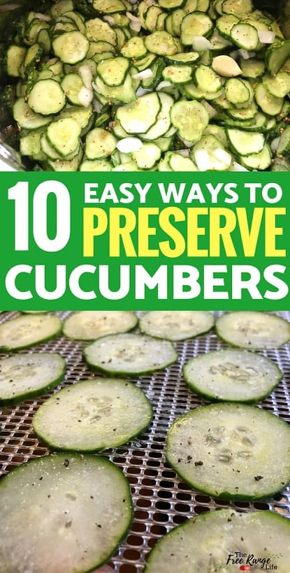 Preserved Foods: Preserve all those cucumbers from your vegetable garden with these 10 ways to preserve cucumbers!