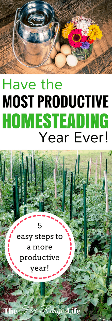 Homesteading Tips: Do you have a long list of things to accomplish on your homestead? Learn the steps to having the most productive homesteading year ever!
