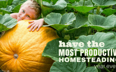 How to Have the Most Productive Homesteading Year Ever!