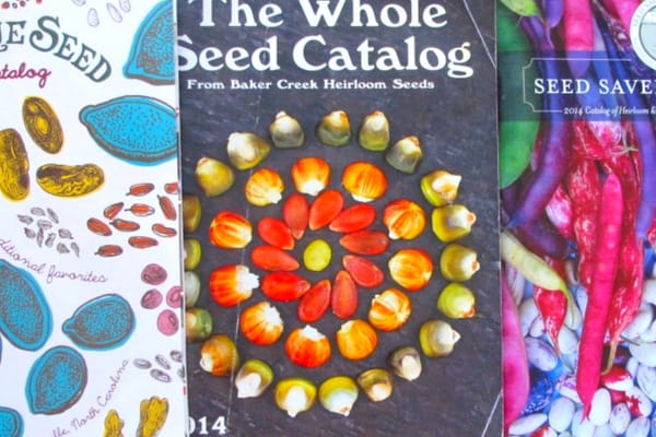 seed starting catalog covers