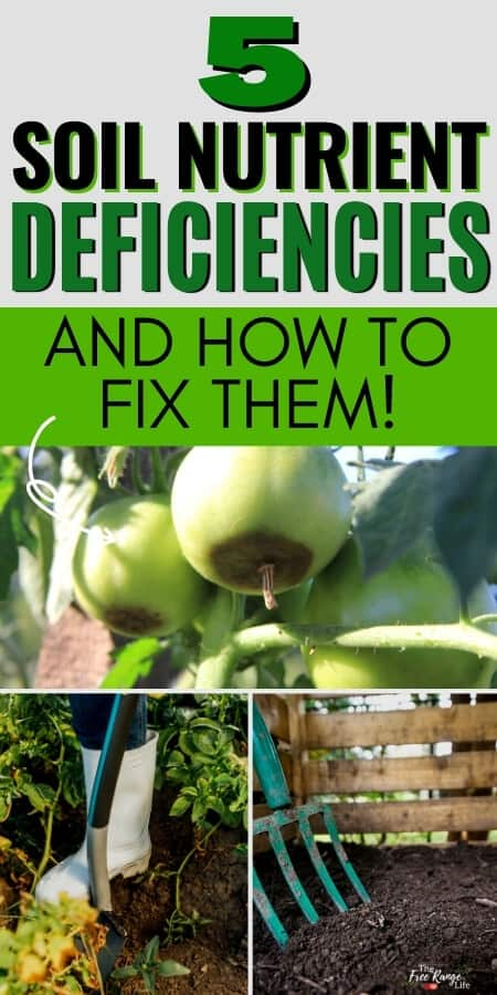 5 soil nutrient deficiencies and how to fix them