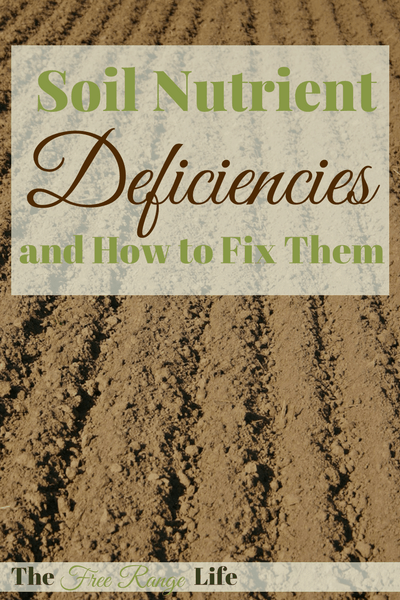 Soil nutrient deficiencies and how to fix them the free for What do you mean by soil