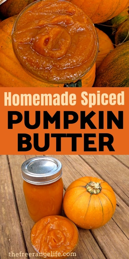 Food Preservation: If you love pumpkin spice you will love this spiced pumpkin butter for a fall treat!