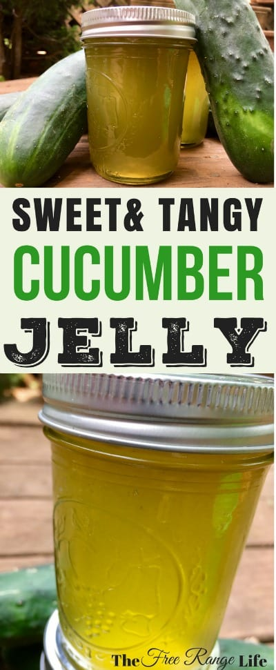 Are you looking for something other than pickles to do with your cucumbers? Try this sweet and tangy cucumber jelly for something light and refreshing!