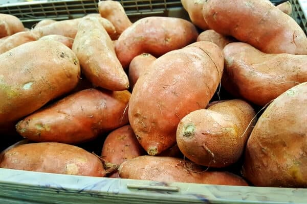 homegrown sweet potatoes curing