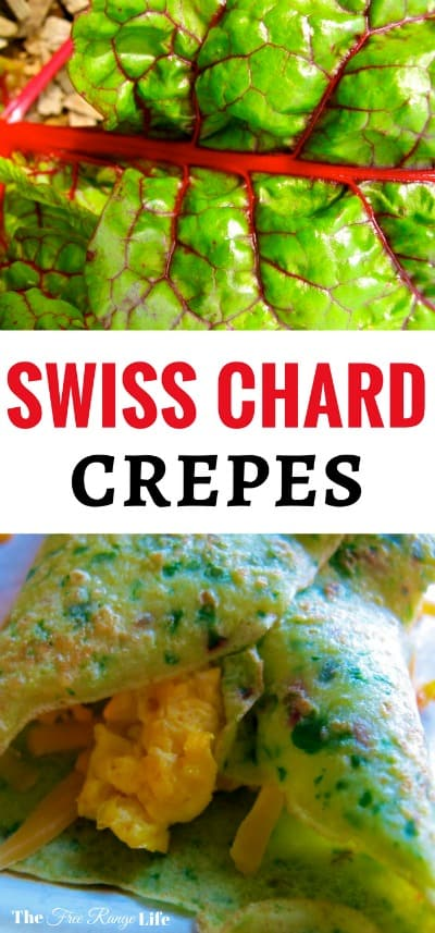 Swiss Chard is easy to grow and full of nutrition. Try out these swiss chard crepes for a farm fresh meal straight from the garden!