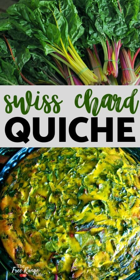 Crustless Chard Quiche- Fresh from the Farm!