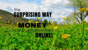 There are a million ways to make money from your homestead. Find out the surprising number one way we make money online from our homestead!