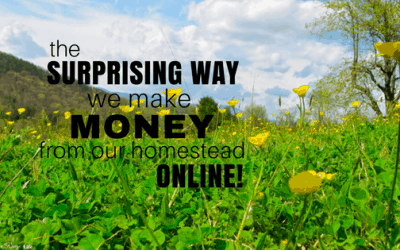 The Surprising Way We Make Money from Our Homestead Online!