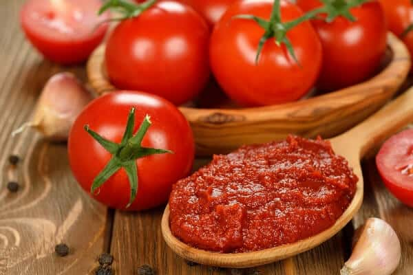 tomato paste on a spoon with fresh tomatoes
