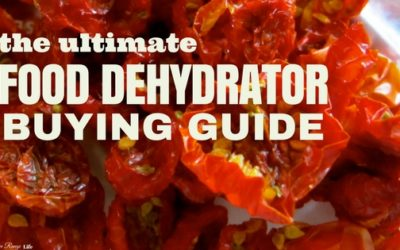 Best Food Dehydrators Buying Guide