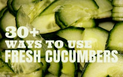 What to Do with Fresh Cucumbers (Recipes + How to Store Cucumbers)
